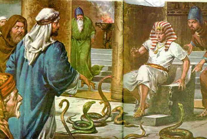 cayado serpiente